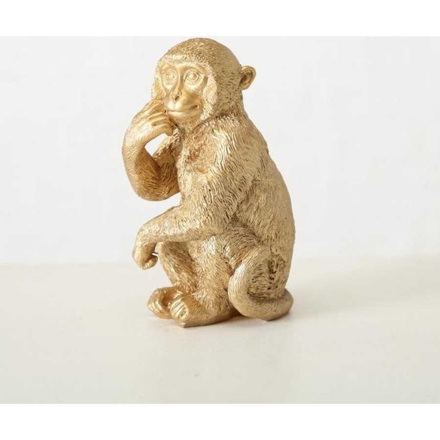 aapje goud