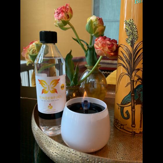 Crocus Giftbox Rose